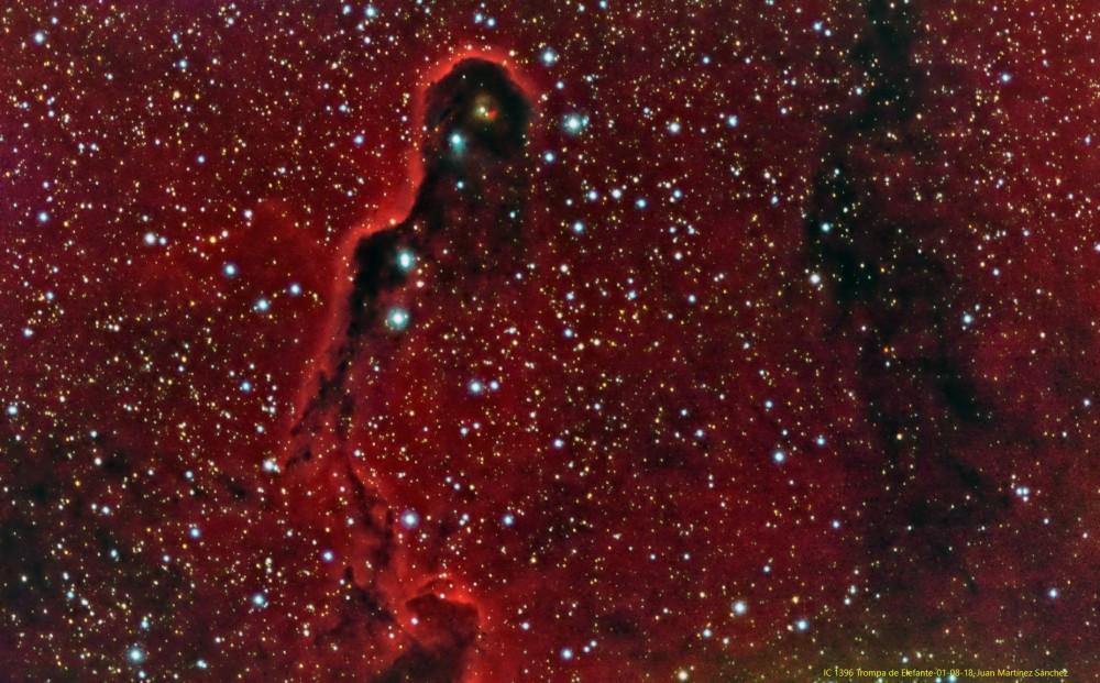 IC 1396-Trompa de Elefante-01-08-18-Juan Martínez Sánchez